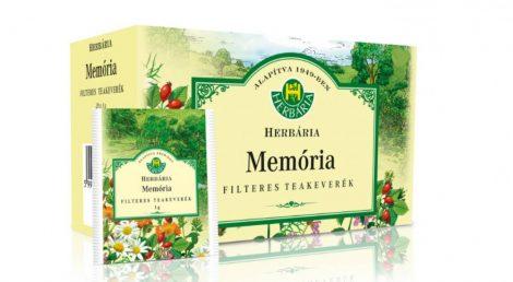 Memória filteres teakeverék